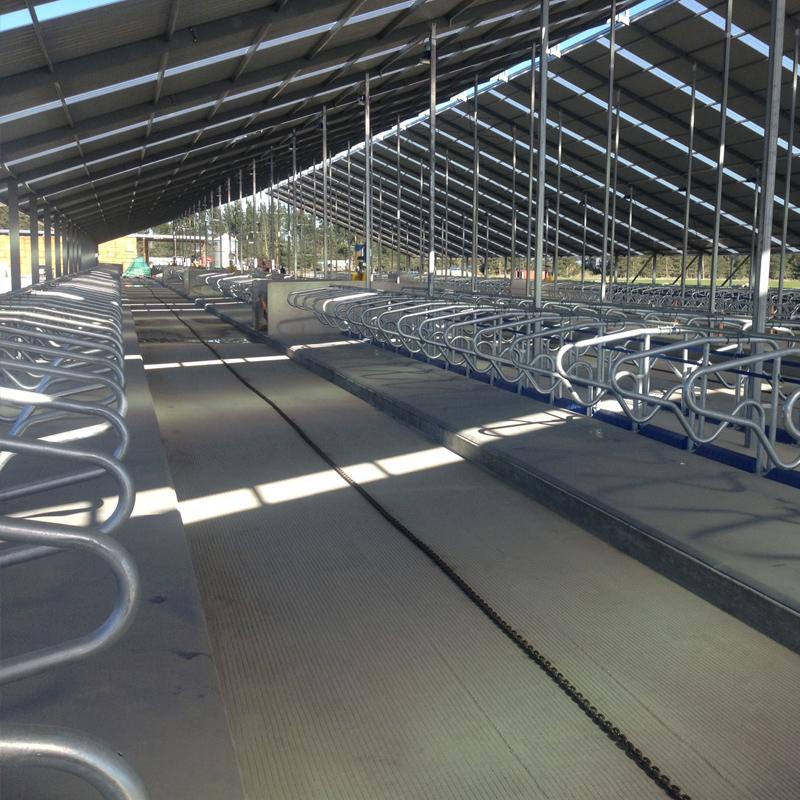 Paveco Concrete - Rural Dairy Sheds 2