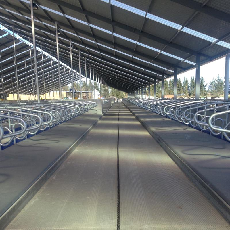Paveco Concrete - Rural Dairy Sheds